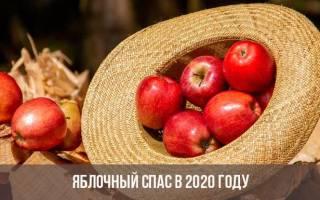 Преображение Господне 2020. Яблочный (Второй) Спас