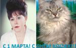 Красивые стихи на Международный День кошек