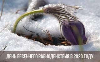 Когда День весеннего равноденствия — 20 марта 2020