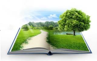 Когда День экологических знаний 2020 — 15 апреля