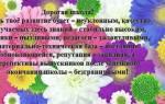 Стихи и пожелания ко дню рождения школы