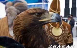 Красивые стихи на День независимости Казахстана