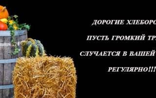 Поздравления в День работников сельского хозяйства