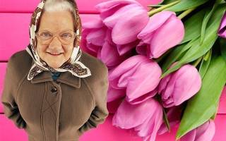 Поздравить бабулю с днем рождения
