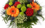 День доброты — поздравления, стихи, смс