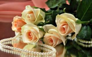 Жемчужная свадьба — поздравления зятю